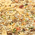 Tidymix The Complete Parrot Diet