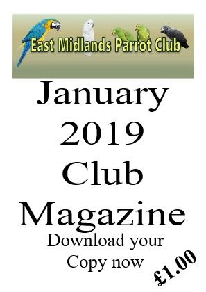 Parrot Club Magazine January 2019 Issue